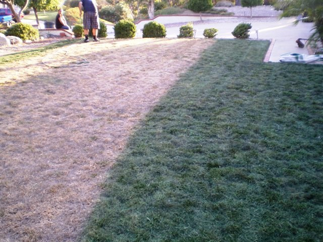 Lawnlift americas best selling grass paint the first tip to keeping a green lawn during a drought is to water the yard during late night hours during the day time in the summer temperatures can workwithnaturefo
